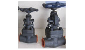 API/ANSI forged valve