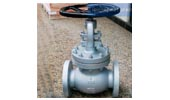 API/ANSI globe valve