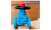 Non rise bellows globe valve