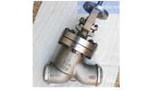 Bare stem globe valve